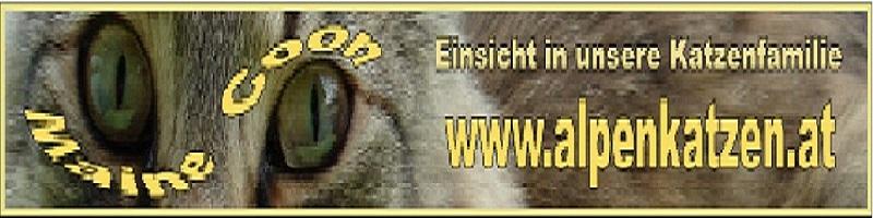 Logo Alpenkatzen