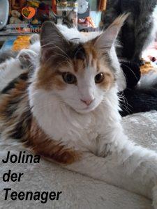 jolina_01