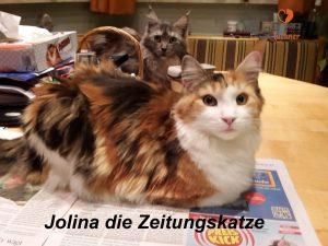 jolina_02